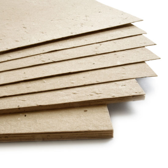 plantable_seed_paper_11x17_latte_brown.t1441115070