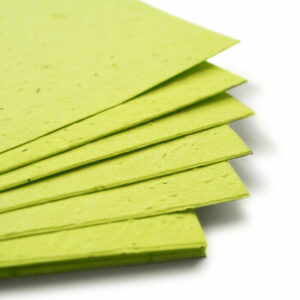 plantable seed paper 11x17 lime green.t1441115070