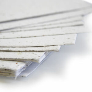 white seed paper